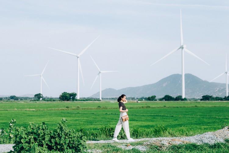 dam nai wind farm in phan rang proves a hit among young travelers hinh 2