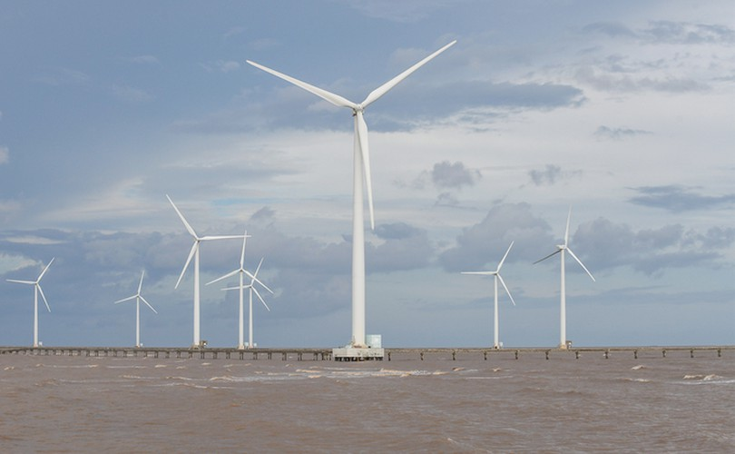 exploring unique offshore wind farm in bac lieu hinh 2