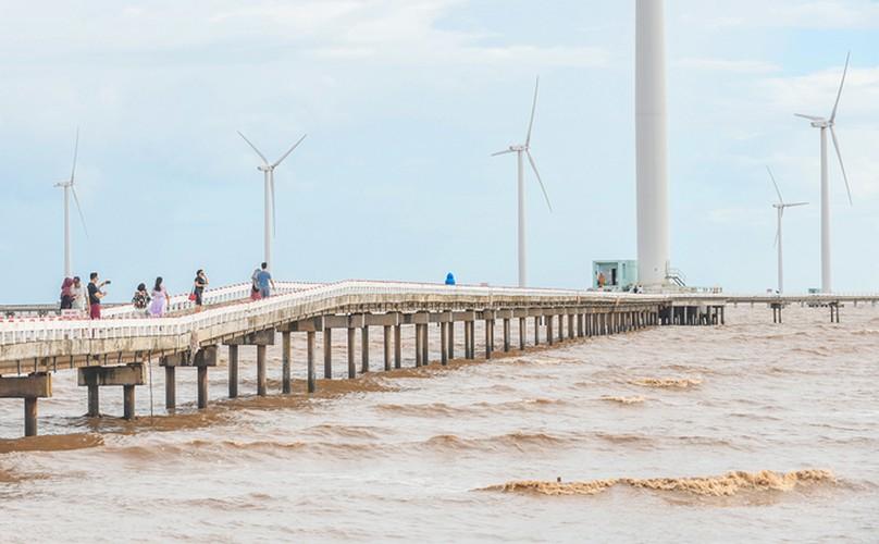 exploring unique offshore wind farm in bac lieu hinh 4