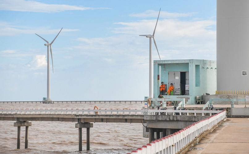exploring unique offshore wind farm in bac lieu hinh 5