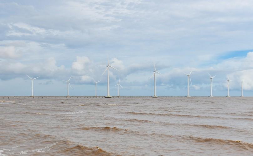 exploring unique offshore wind farm in bac lieu hinh 6