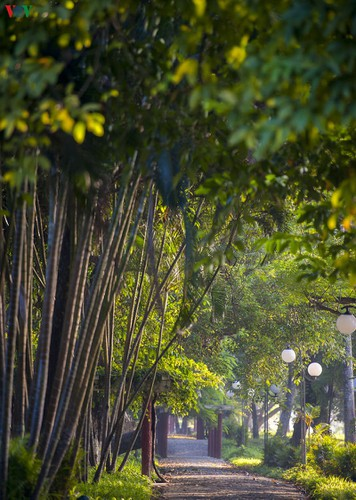 hue imperial city appears at its scenic best in autumn hinh 4
