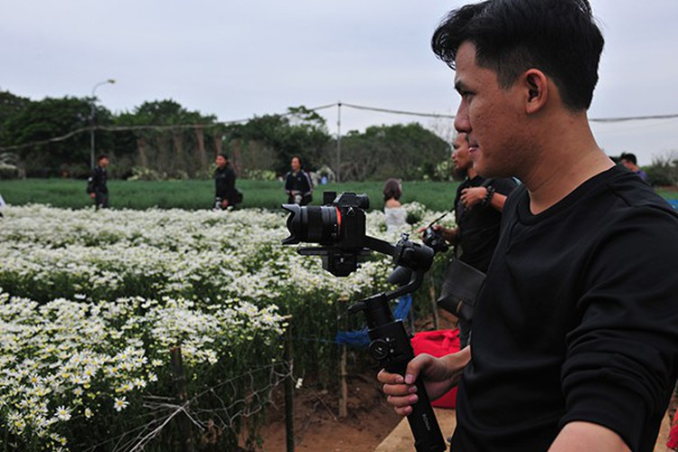 young people flock to witness ox-eye daisy gardens in hanoi hinh 7