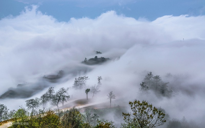 y ty cloud hunting season in lao cai province hinh 10