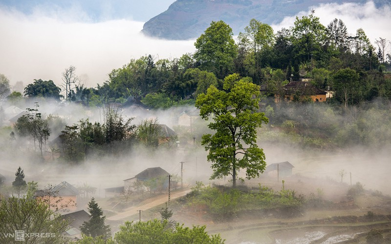 y ty cloud hunting season in lao cai province hinh 5