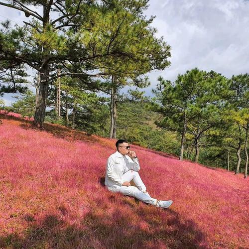 discovering stunning pink grass hills of da lat hinh 1