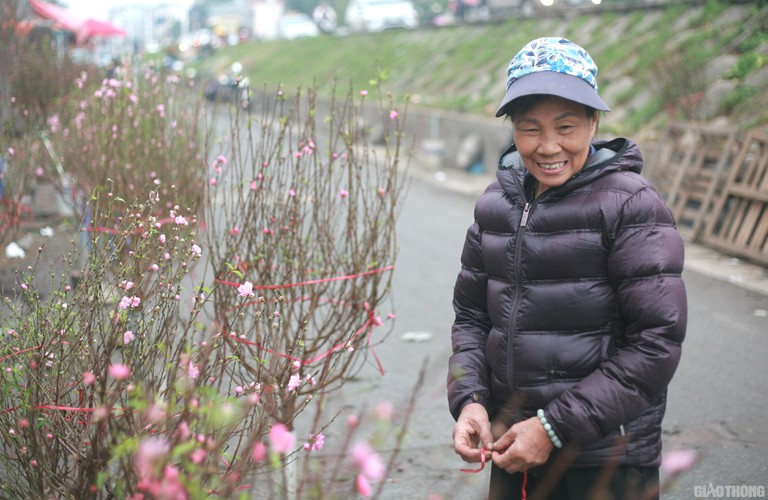 nhat tan peach blossoms signal first signs of tet in hanoi hinh 3