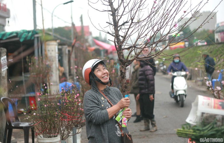 nhat tan peach blossoms signal first signs of tet in hanoi hinh 9