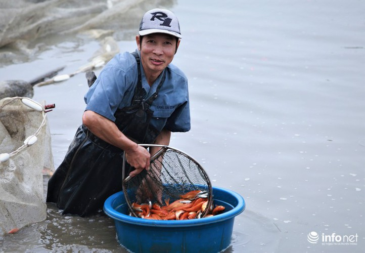 business booms in red carp farming village ahead of kitchen gods day hinh 9