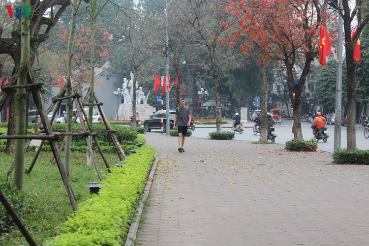 foreign tourists in hanoi wander streets without face masks hinh 4