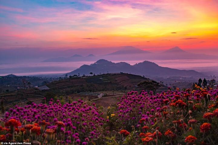 vietnamese photographer wins agora images beauty 2019 hinh 2
