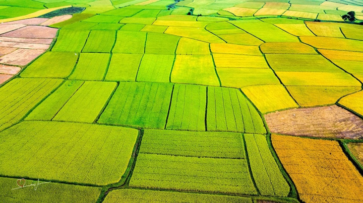 stunning beauty of quang ngai captured from above hinh 15