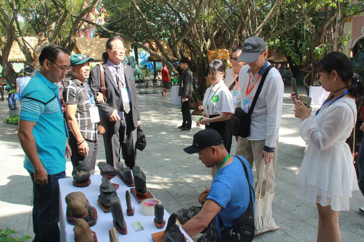 thousands of bonsai go on show at asia-pacific exhibition hinh 4