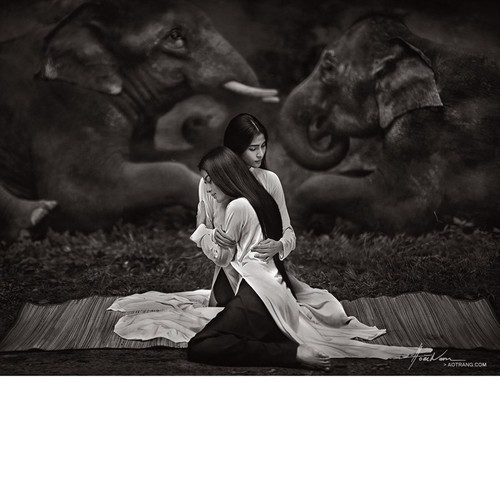 charity photo project showcases vietnamese beauties hinh 2