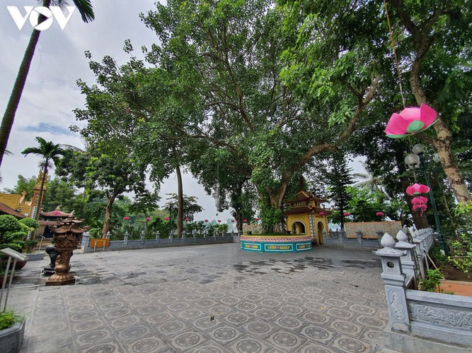 historical relic sites in hanoi left deserted amid covid-19 fears hinh 5