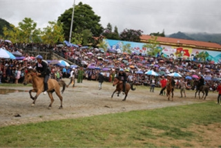 Sapa to host debut Fansipan horse race