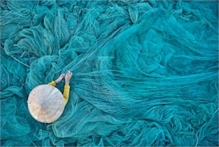 Photo captured in Vietnam named in Top 10 of Independent Photographer Award