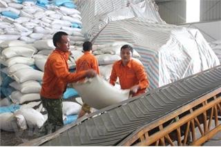 Vietnam's trade turnover exceeds $400 billion