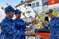 Naval ships bearing Tet gifts brings joy to soldiers at sea