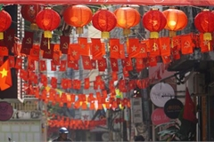 Tet decorations spring up on streets across HCM City