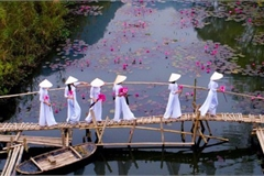 Vietnamese photographer wins #Spring2020 contest for best photo