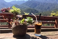 Foreign website suggests leading coffee shops in Sapa