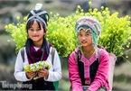 Images of playful children on stone plateau in Ha Giang