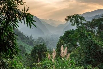 Majestic Phong Nha-Ke Bang National Park through lens of foreign photographer
