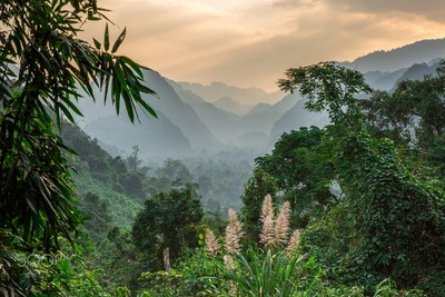 Majestic Phong Nha-Ke Bang National Park through lens of foreign photographer