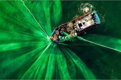 Vietnamese photographer wins place in 50 best photos of #Green2020