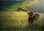 Ha Giang province captured through lens of photographers