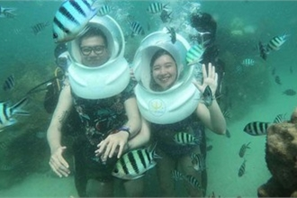 Leading Vietnamese locations to view coral reefs