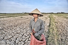 McKinsey: 8-13% of Asia GDP to be at risk from climate change by 2025