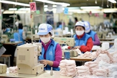 Vietnam records highest rate of SMEs in SE Asia looking for expansion