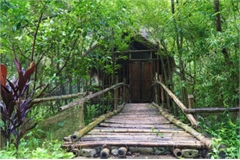 Bamboo bungalows in Ninh Binh prove a hit among visitors