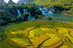 Dramatic images showcase Vietnam's beautiful landscapes