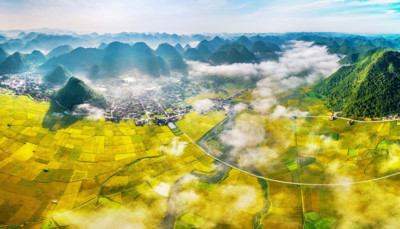 Discovering stunning ripening paddy fields of Bac Son valley