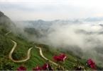 Exploring Quan Ba heaven gate amid a sea of clouds in Ha Giang