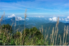 Exploring breathtaking scenery from Bach Ma mountain peak