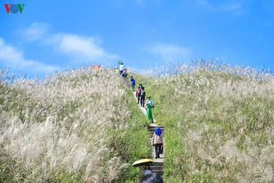 Binh Lieu represents ideal destination for visitors during autumn