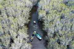 Discovering Bau Ca Cai mangrove forest