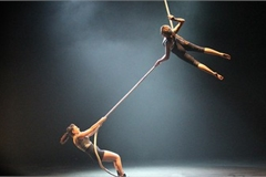 Australia's leading circus troupe to perform at Hue Festival 2020