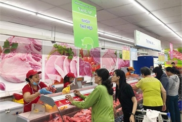 Domestic pork prices fall as pigs imported in large volume