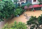 Severe flooding halts hydropower plant in northern Vietnam