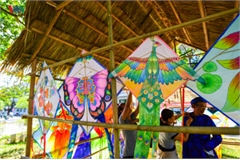 Hue Kite Festival 2019 flies high on opening day