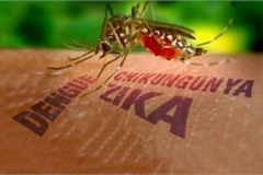First Zika virus infection detected this year in Vietnam