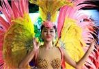 Street festival promotes Hanoi's diverse culture