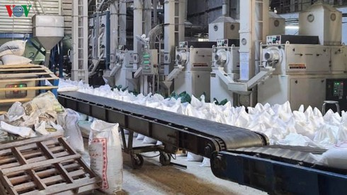 temporary suspension of rice exports given thumbs-up hinh 0