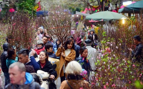 hanoi gears up to open 51 spring flower markets for tet hinh 0