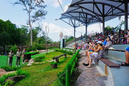 tet tour options in hcm city hinh 0